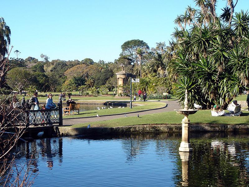 australia sidney jardin botanico ART 218: VIAJANDO: EL TIEMPO EN TU DESTINO SÍDNEY/AUSTRALIA
