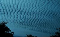 altocumulos1 thumb Galería Fotos Nubes