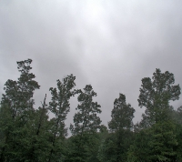 altostratos2 thumb Galería Fotos Nubes