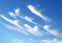 cirros1 thumb Galería Fotos Nubes