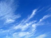 cirros7 thumb Galería Fotos Nubes