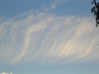 cirros8 thumb Galería Fotos Nubes